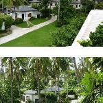Les villas dans la verdure.