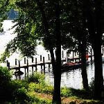 View of the hotel jetty down through the trees from the lodges