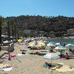 Marina's beach