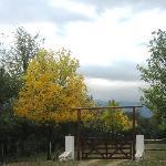 The entrance to Hacienda la Borinqueña