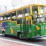 Boston Upper Deck Trolley Tours Foto