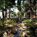 Tranquil Garden Stream