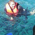 diverse marine life
