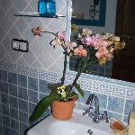 Había orquídeas en el baño
