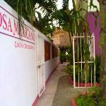 Welcome to Rosa Mexicano