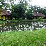 Petit lac privé