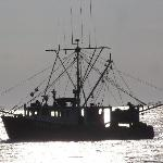 Fishing boat heading out of Gloucester