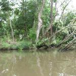 Bon Secour River Foley, AL