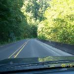 headed towards kid valley