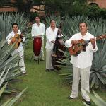 Los Hacendados appearing nightly at the Hacienda