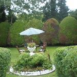 Garden for tea