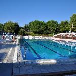 espace piscine olympique