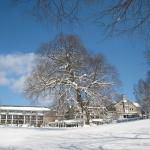 Winteraufnahme Hotel Jagdhaus Wiese