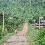 Road to Eco-Lodge
