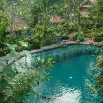 Larger pool