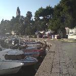 Lopud harbour