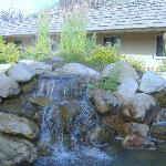 Lots of water features on the property