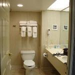 Bathroom in Room 917