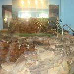 indoor hot pool jaccuzzi