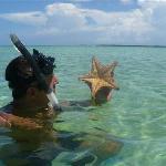 starfish my husband found
