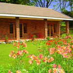 Tranquill Gardens