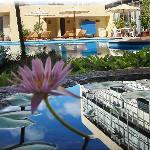 Maria del Carmen pool