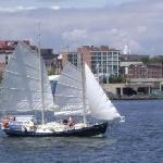 Sailing on the Summer Wind off Penns Landing