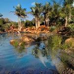 New natural swimming pool