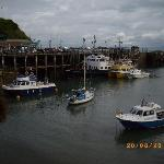 ILFRACOMBE HARBOUR !!