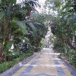 Marbella central park
