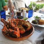 Fresh lobster!!