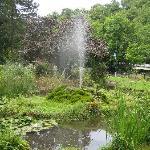 derwent gardens
