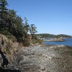view of shack island from Piper's Park trail