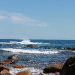 Rockport surf