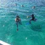 My Colleagues Snorkelling with the Marine Biologist Johnny