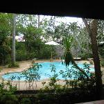 Schwimmbecken mit Liegen ,Schirme,Dusche,WC
