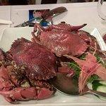 Photo of Fresh Unique Seafood 23