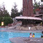 water slide at the redwood pool