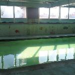 Green pool, mold on the back wall