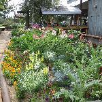 front door garden
