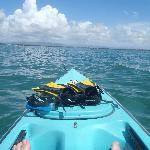 Using the free kayak