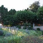 Couché de soleil sur le jardin