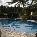pool asrea