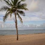 ocean park beach