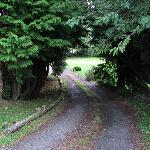 Vialetto d'ingresso