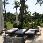 piscine1 vue jardin