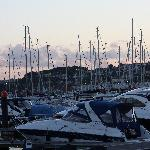 boats in torquay harbour at sunset