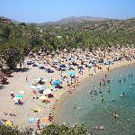 Spiaggia di Vai(5000palme)
