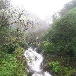 Rainy season in Mahabaleshwar