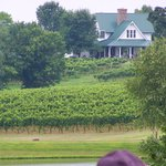 Shelton Vineyards - Owner's home and some of the vines